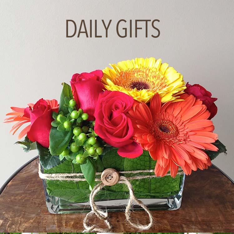 gallery  flowers by larry, Beautiful flower